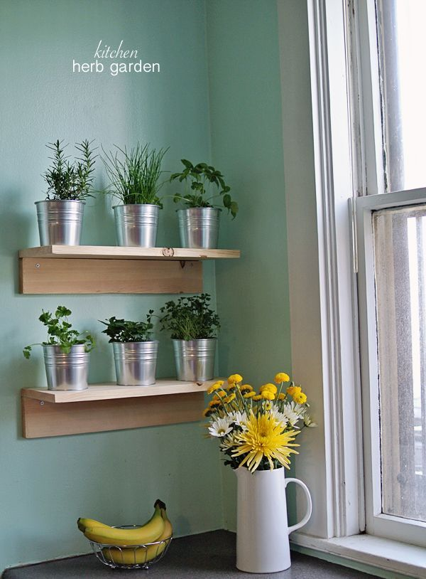 how to make a simple kitchen herb garden via burritos bubbly - Simple Kitchen Herb Garden