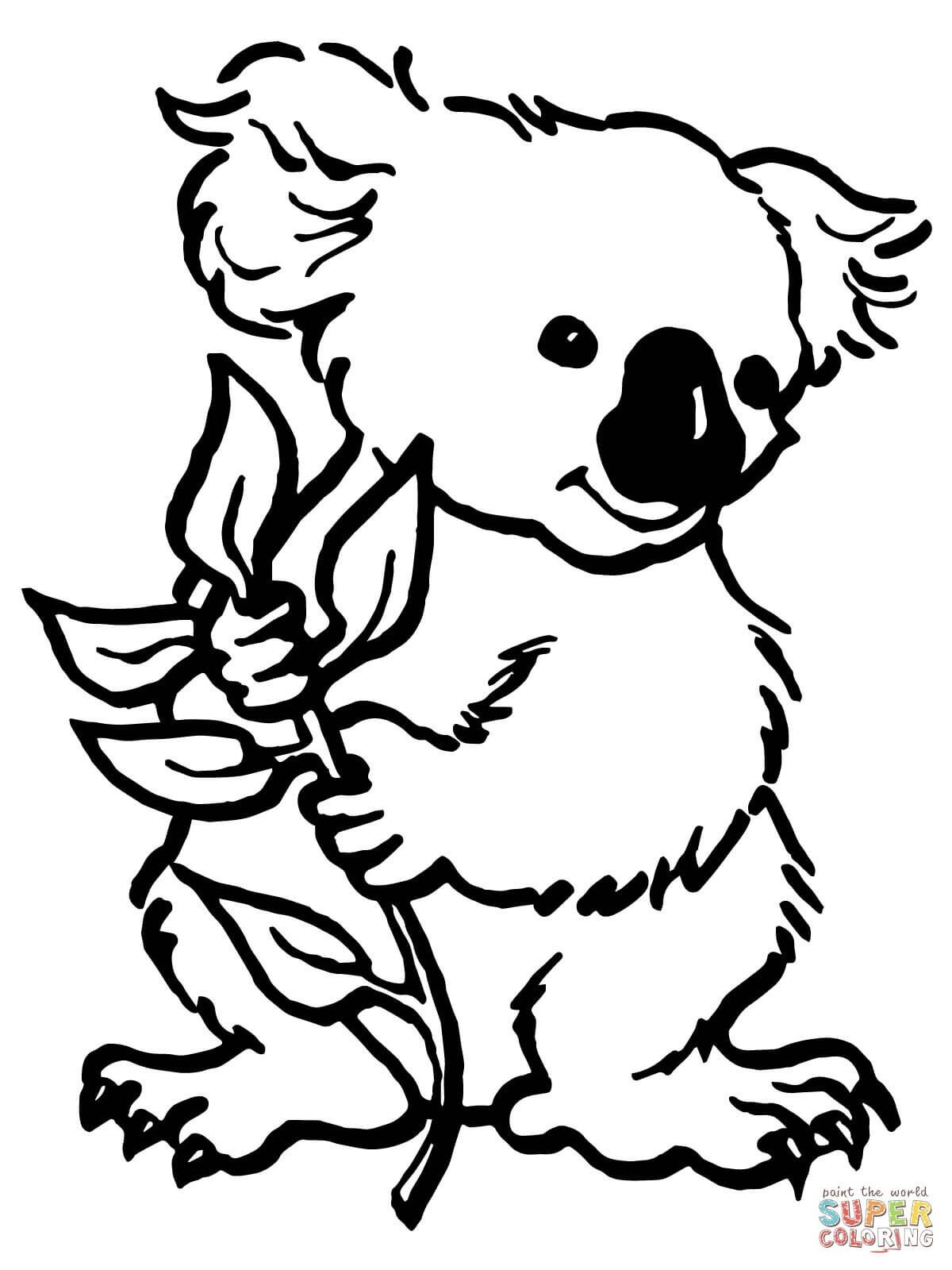 Pin By Diane Collier On Colouring In Bear Coloring Pages Animal Coloring Pages Animal Coloring Books