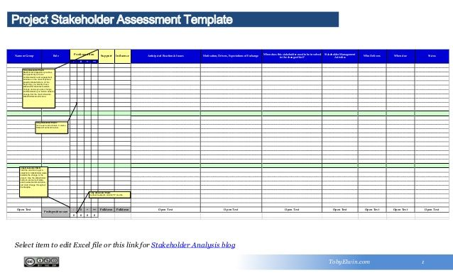 Stakeholder Assessment Template  ProjectRisk Management