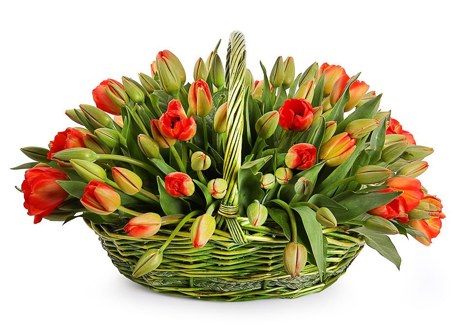 Тюльпаны в корзине открытки, открытках новым