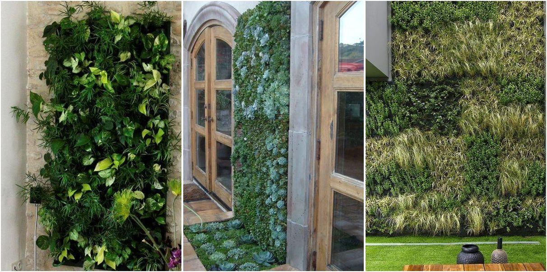 Ideas de dise os para jardines verticales flores de todo for Pinterest jardines verticales