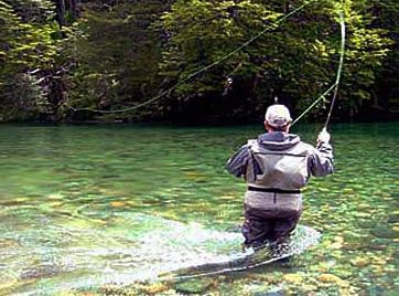 Pin By Robert Doran On Fly Fishing Fly Fishing Trout Fishing Fishing Tips
