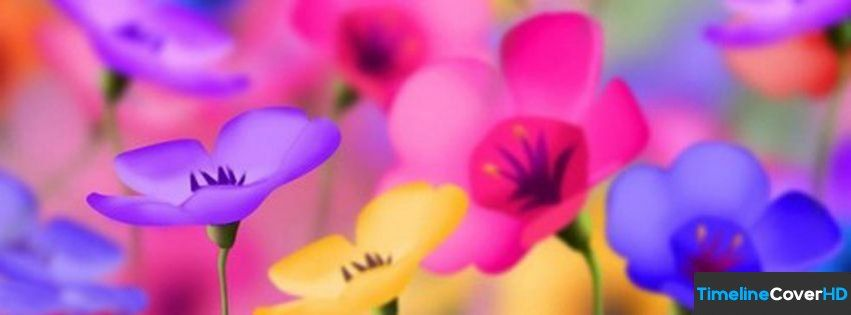 Very Colorful Flowers Facebook Cover