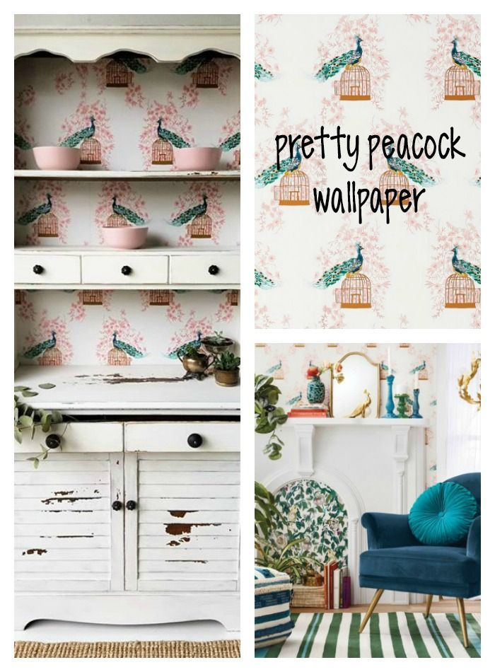 Peacock Peel & Stick Removable Wallpaper Opalhouse™️ ad