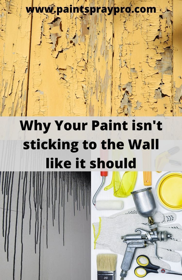 How Long Does it Take Primer to Dry? 6 Factors to