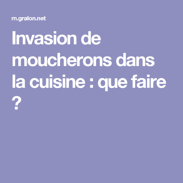 Invasion de moucherons dans la cuisine que faire id es sympas - Moucherons cuisine ...