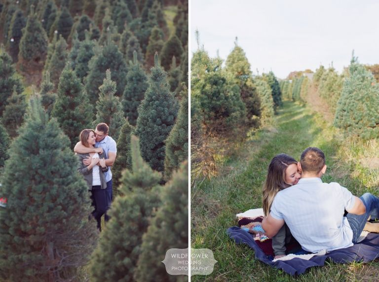 Rustic engagement photography session at the Timberview Tree Farm in  Columbia, MO. Great pose idea for a natural looking picnic... love that  shot of the ... - Rustic Engagement Photography Session At The Timberview Tree Farm In
