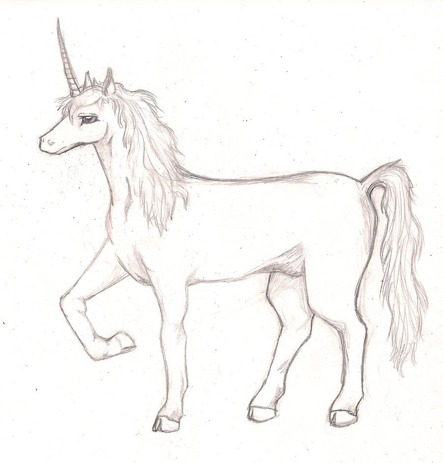 unicorn sketch by samuraxiv on deviantart unicorn fantasy myth