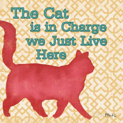 Patterned Pets Cat III Art Print