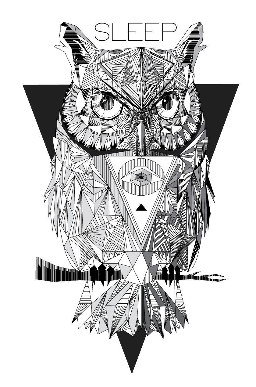 GEOMETRIC OWL on Behance | 0wls | Pinterest | Geometric owl, Owl and ...