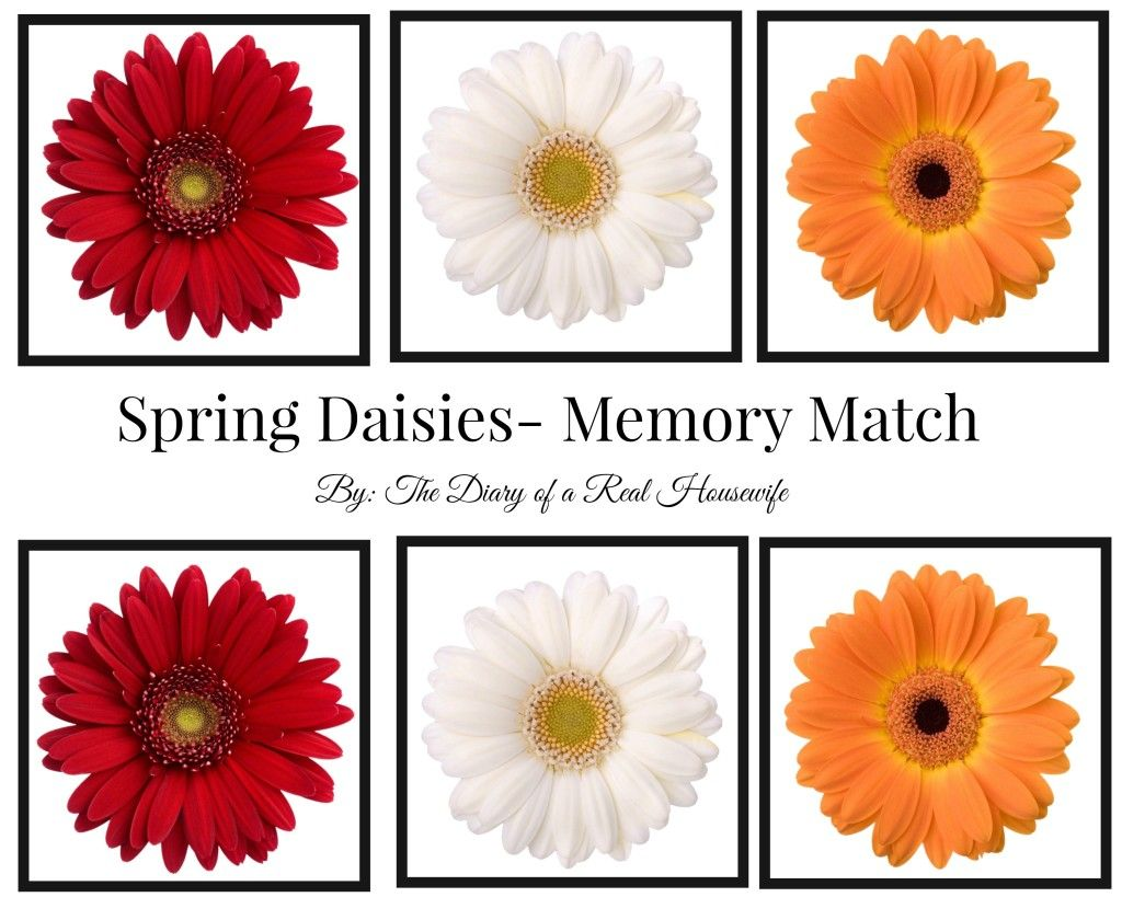 Free Printable Spring Flower Memory Match The Diary Of A Real