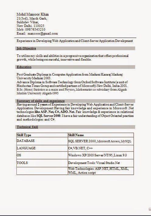 free sample cv sample template example ofexcellent cv resume vb programmer resume - Vb Programmer Sample Resume