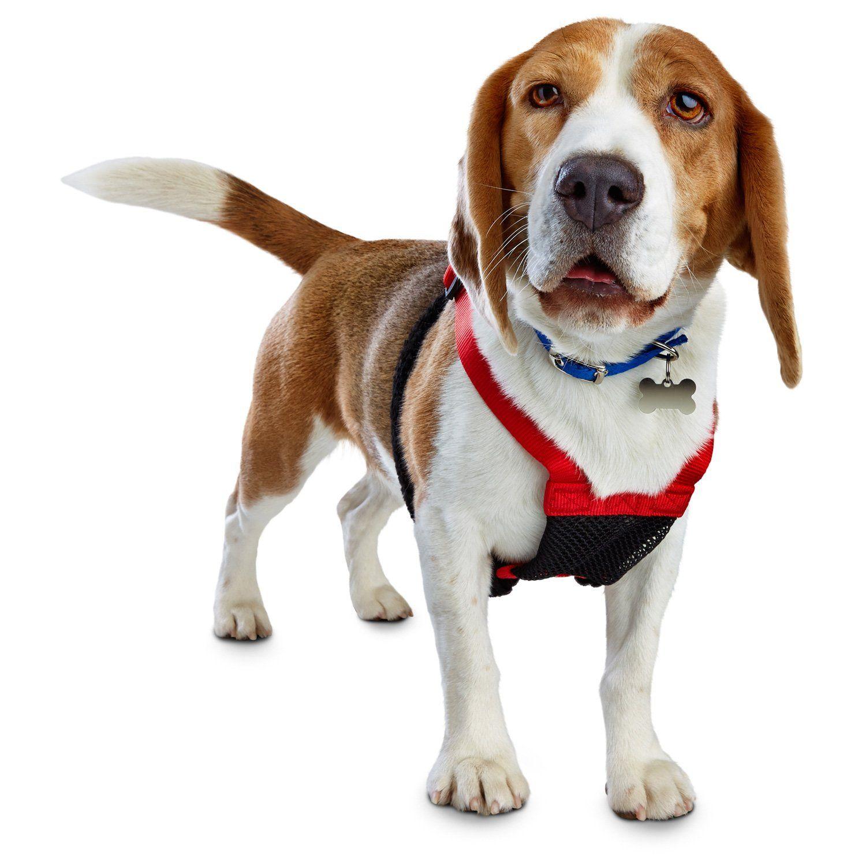 Good2go Red No Pull Dog Harness Medium Dog Harness Corgi Dogs