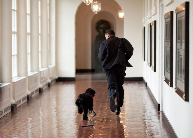 The White House's Photographer Shot Nearly 2M Photos of Obama, Here are His Favourites - UltraLinx