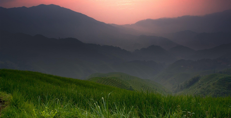 chromebook desktop background Field wallpaper, Landscape