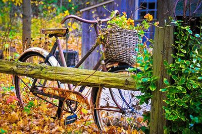 Heaven on two wheels. I love vintage bicycles!