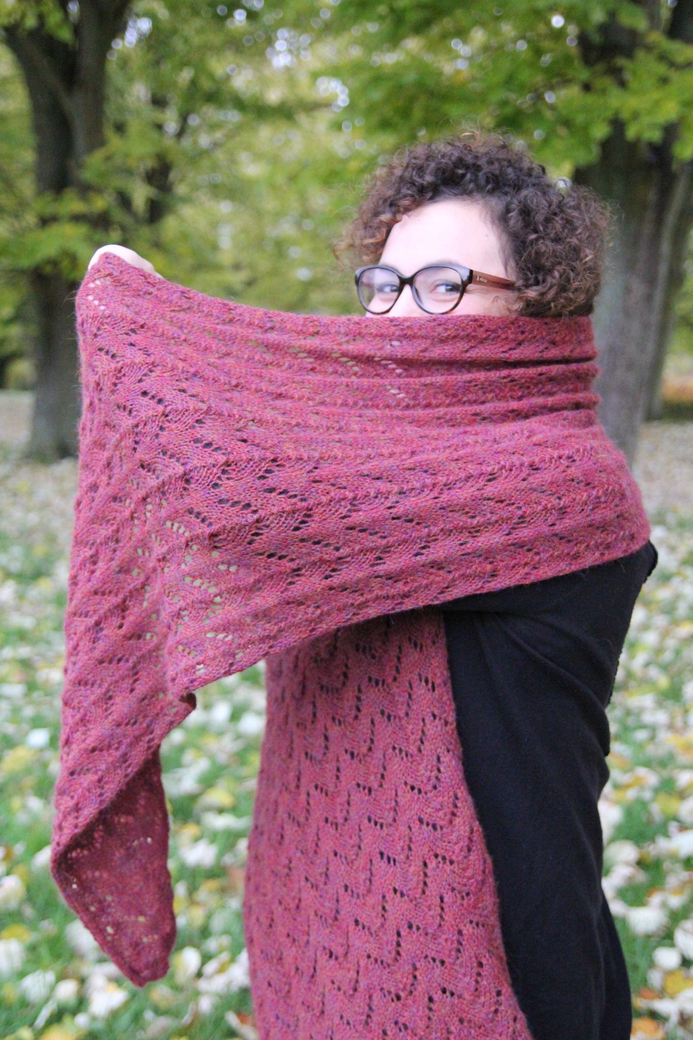 tricoter l'alpaga