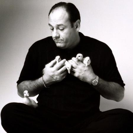 Tony with baby ducks