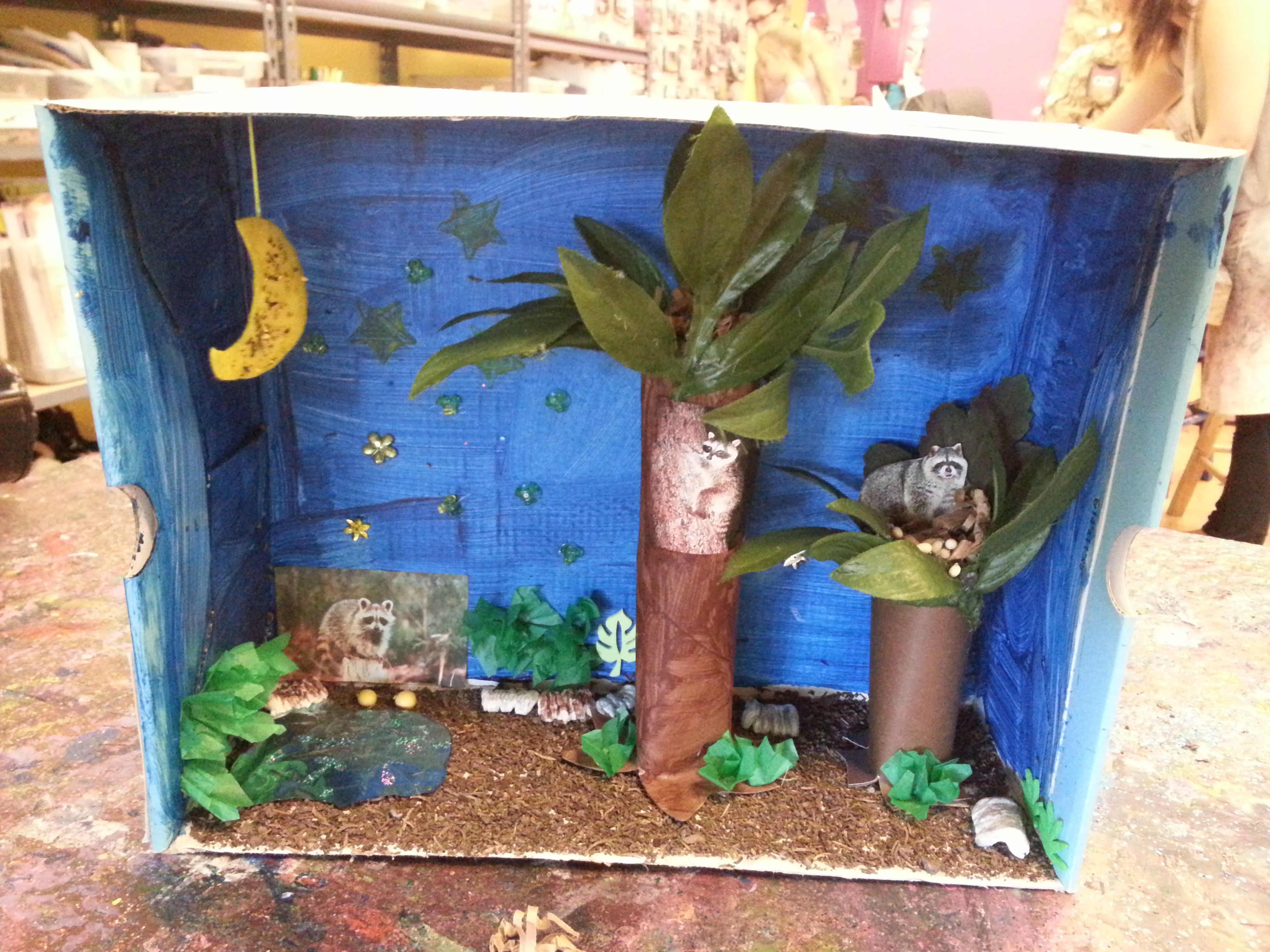 I Learned A Thing Or Two As Amanda 8 Created This Raccoon Habitat Turns Out Those Striped