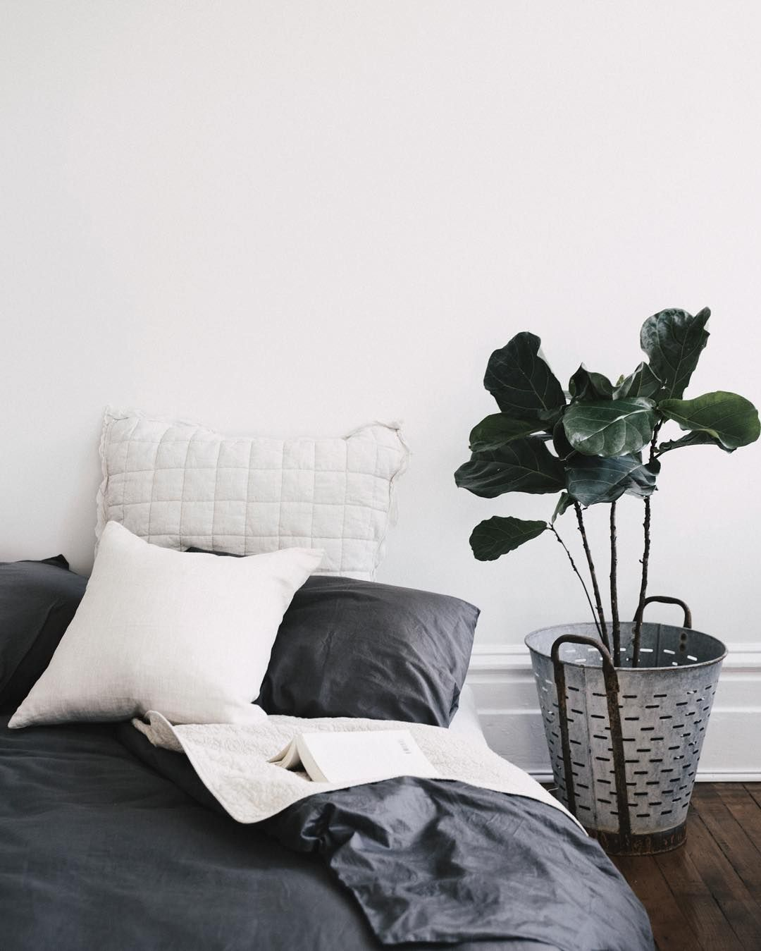 Figgies instead of a bed side table always does the job 🌿 #theapartment