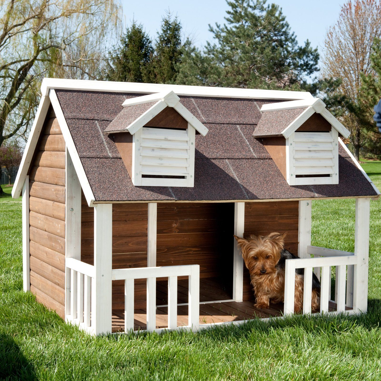 Dixie and Chewy Would Love this in the backyard! Dog