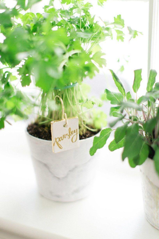 Spring Gardening 10 DIY Plant Markers Garden markers