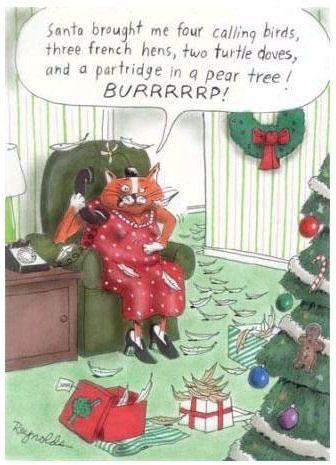 funny+christmas+cartoon+cat+ho-ho-ho.jpg (336×465) (With ...
