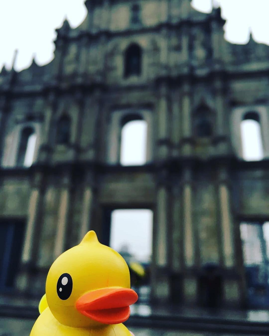 #duck#ducky#duckie#duckies#rubber#rubberduck#rubberducks#rubberducky#rubberduckies#rubberduckie#yellowduck#bathduck#เปด#Vịt#Canard#Pato#Ente#утка#Eend#鴨#アヒル#오리#kylpyankka#quack# by apolo1313