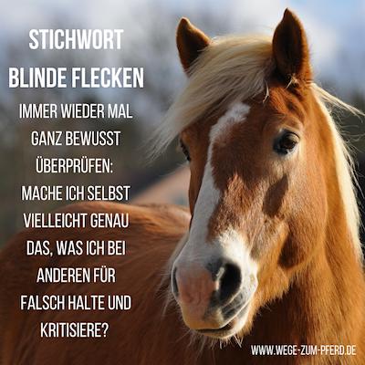 Blinde Flecken Oft Kritisieren Wir Bei Anderen Genau Das Was Wir Selbst Tun Pferdeliebe Flecken Blinde