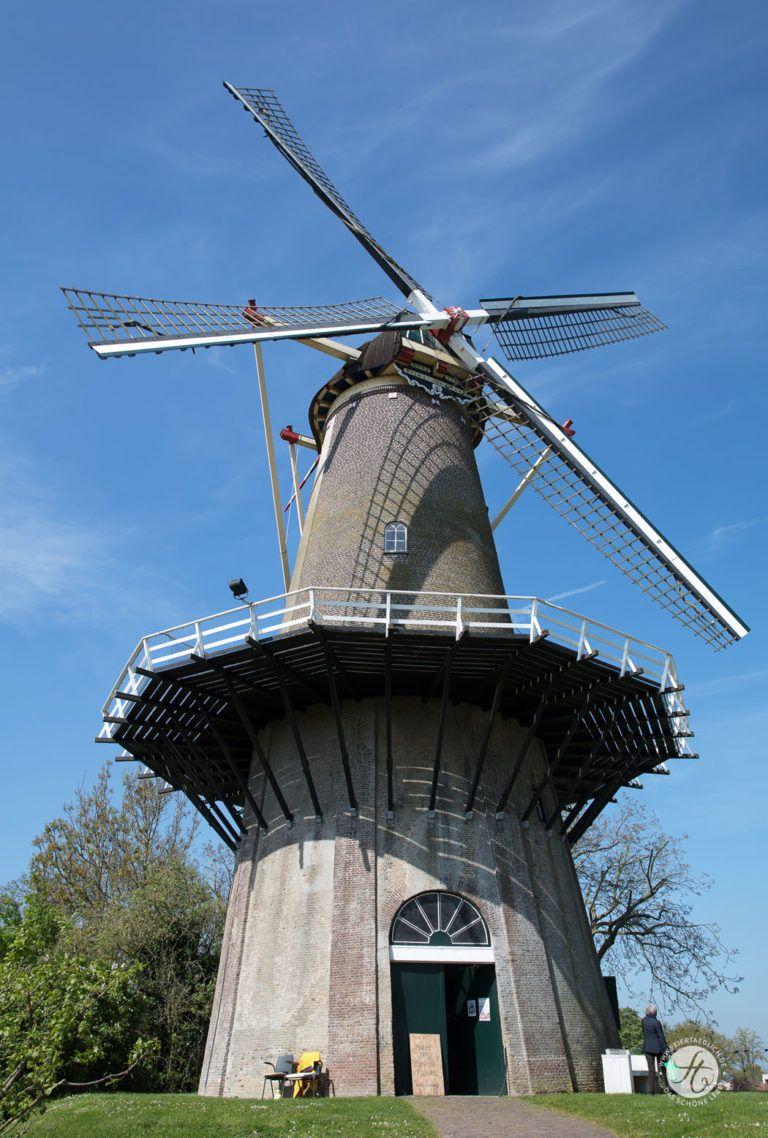 Buren Windmuhle Lekker Radeln Ein Wochenende In Holland Mit