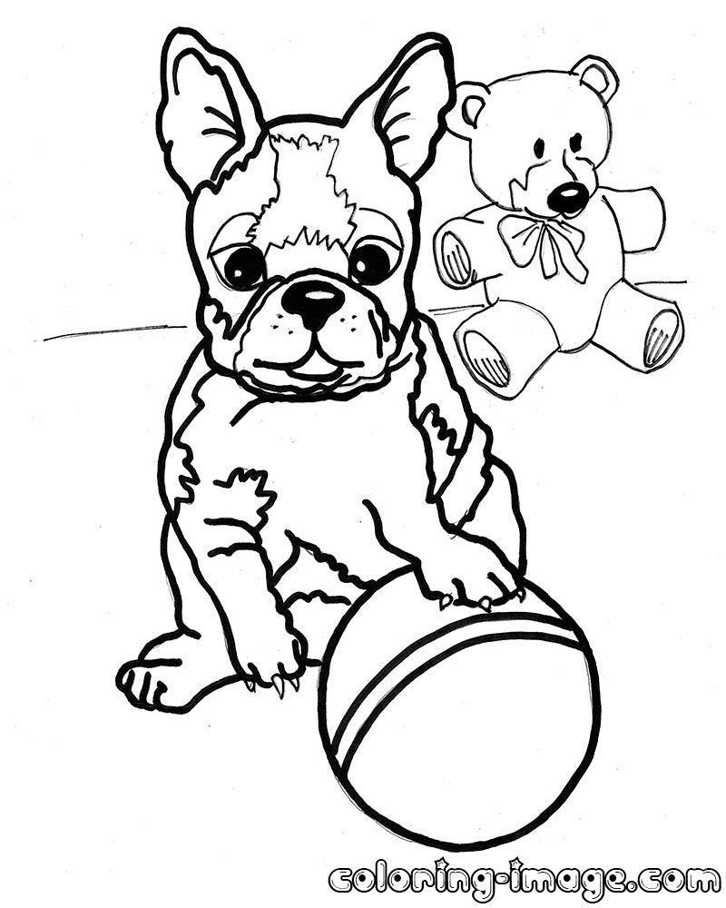 Boston Terrier Coloring Page By Yuckles Dog Coloring Page Dog Coloring Book Horse Coloring Pages