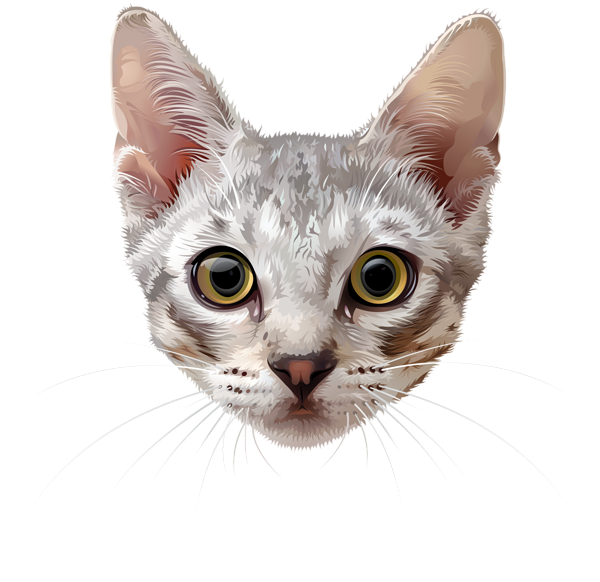 Cat Face Png Clip Art Image Cat Face Art Images Cats And Kittens