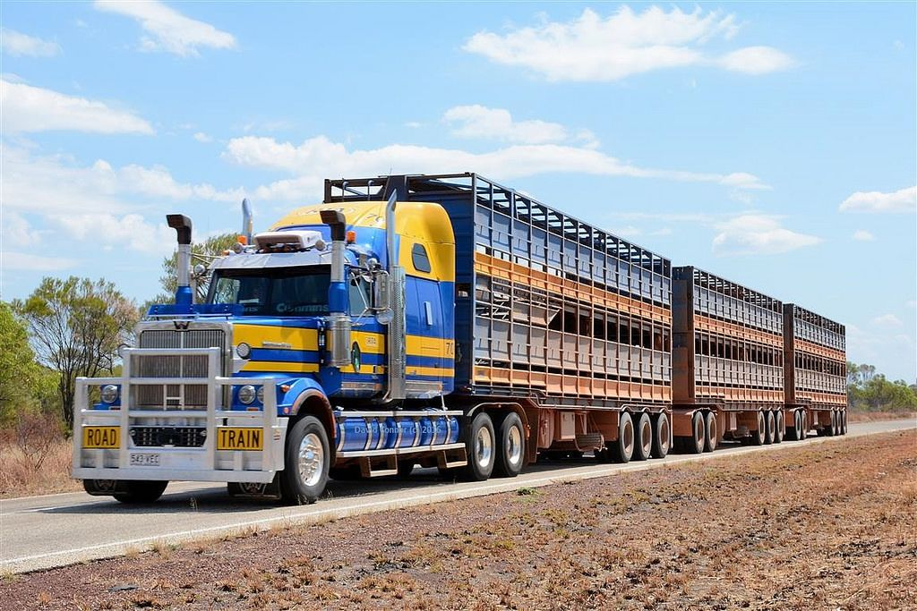 Ultimatesemitrucks Com Hha Western Star Western Star Trucks