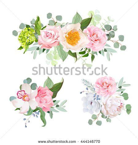 Stock Vector Stylish Various Flowers Bouquets Vector Design Set Green Hydrangea Rose Camellia Orchid Peony 4 Vector Flowers Flower Crown Drawing Flower Clipart