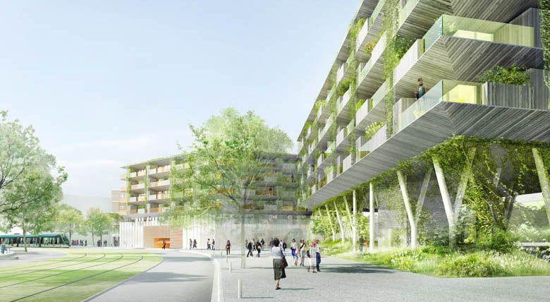 景觀/小島概念89 apartments by ECDM