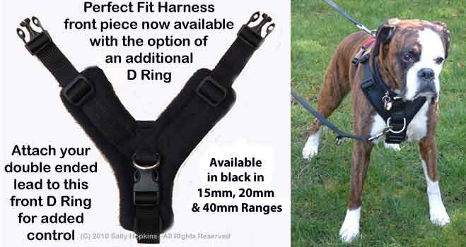 Another Open Shoulder Front Attach Harness Option Perfect Fit
