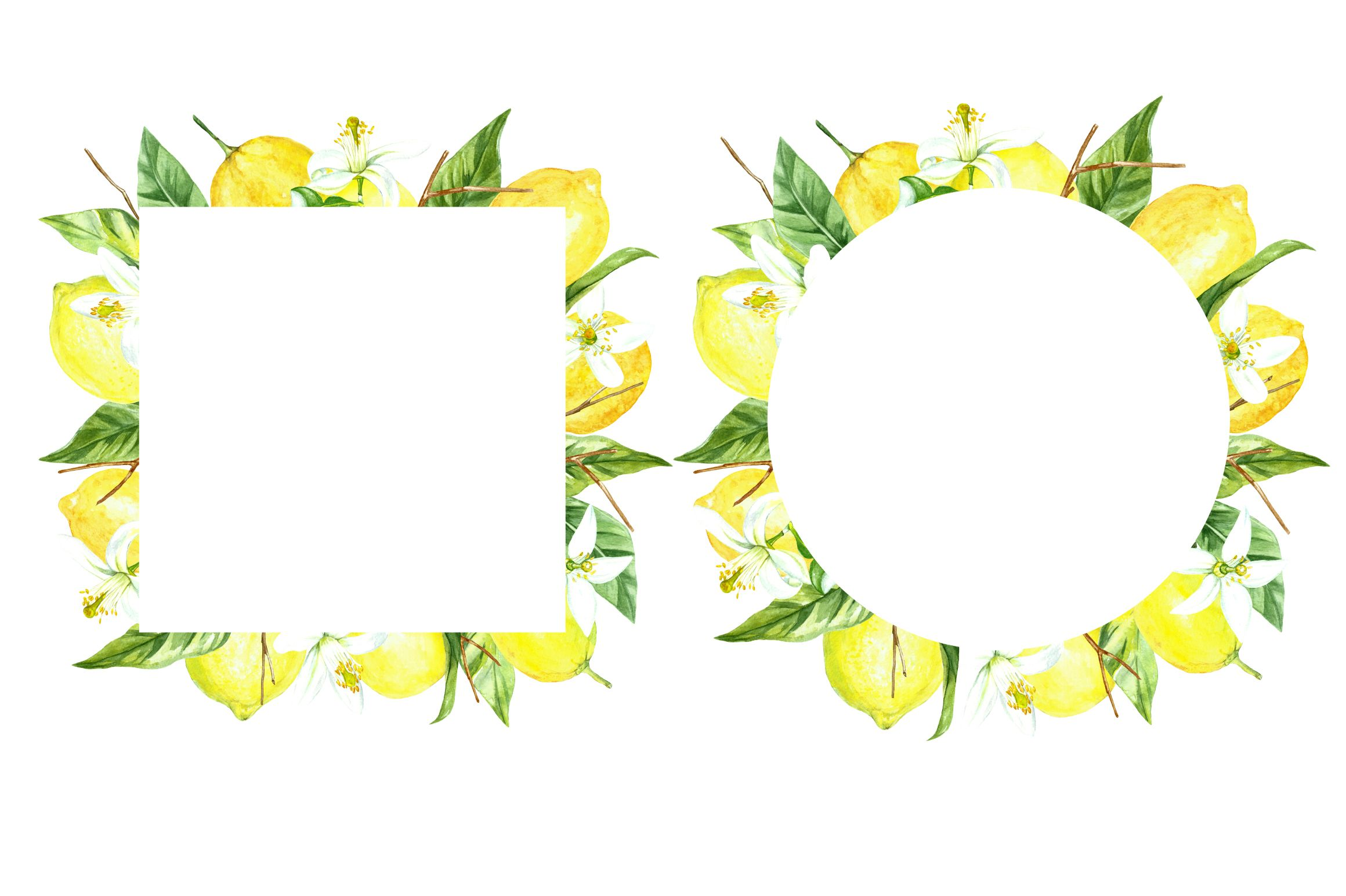 Watercolor Clipart Fresh Lemon Set (Graphic) by Angela