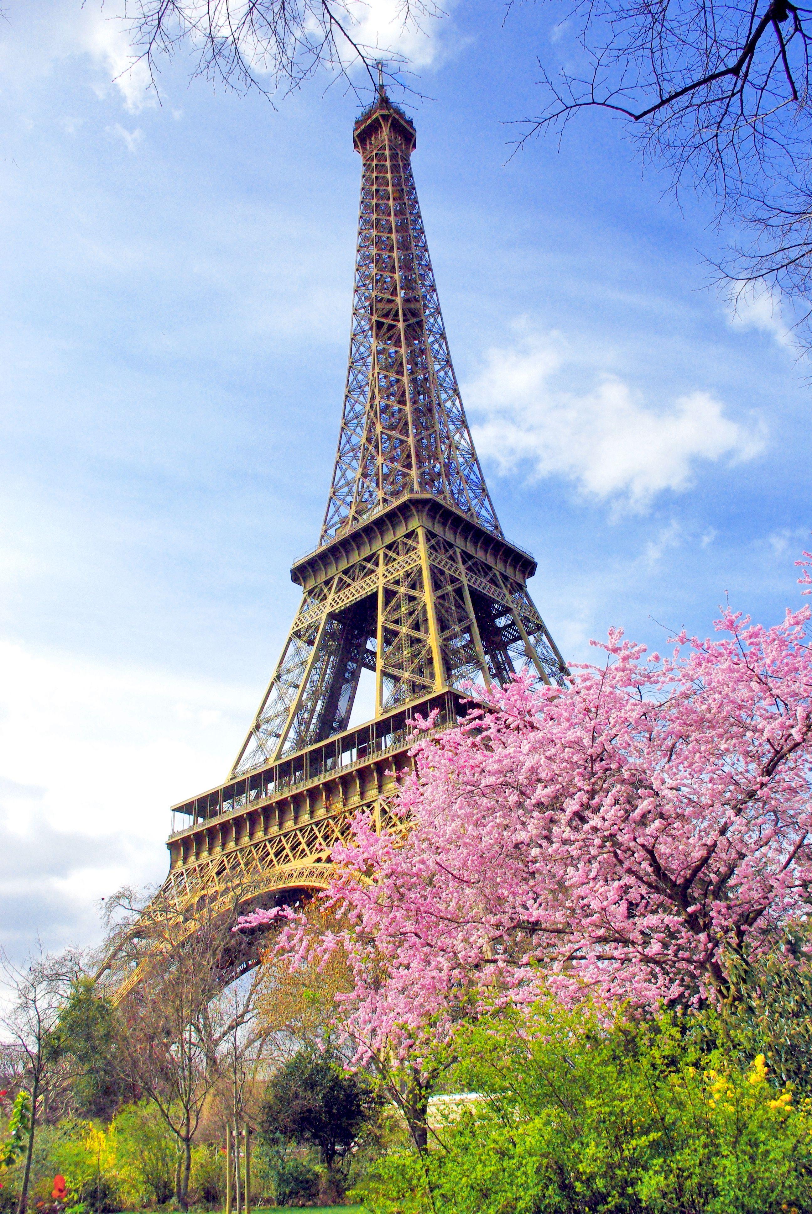 Our Tips To Enjoy Paris In The Spring French Moments Paris Pictures Paris Tour Eiffel Eiffel Tower