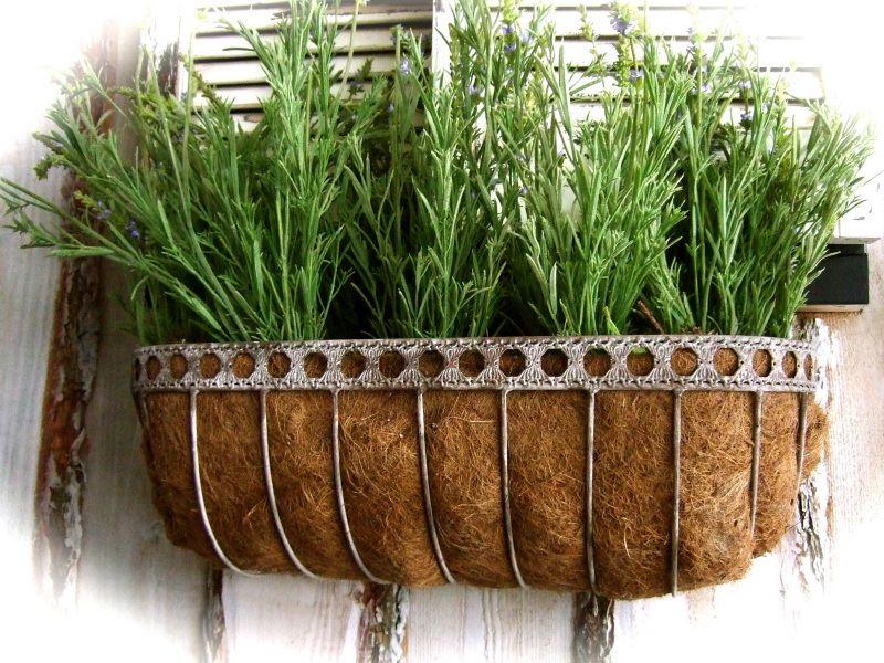 Blumenkasten Zink und Kokos, Balkonkasten, Balkonbepflanzung ...