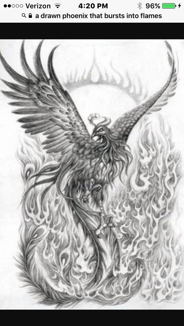 Unexpected - Chapter 5 | Wattpad | Phoenix bird, Phoenix bird