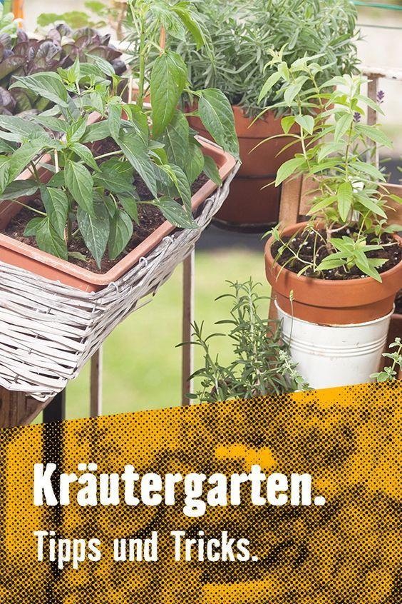 #Beete #Hochbeet #Urbangardening #DIY #selbermachen #selberbauen #pflanzen  #Garten #Inspiration #Gartenideen #Balkonideen | Urban Garu2026