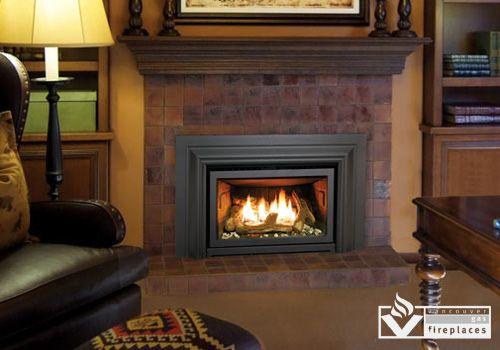 Enviro E20 Fireplace Gas Fireplace Insert Gas Fireplace