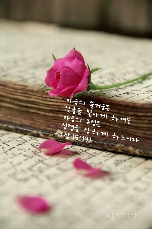*쉬운성경*마음이 즐거우면 얼굴이 환하지만, 마음의 근심은 영혼을 상하게 한다.