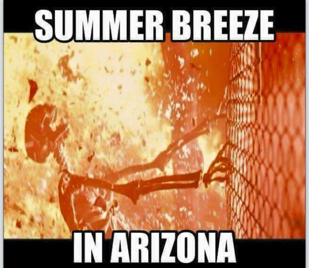 Pin By Hope Wiltfong On Arizona Summer Memes Arizona Humor Funny Summer Memes