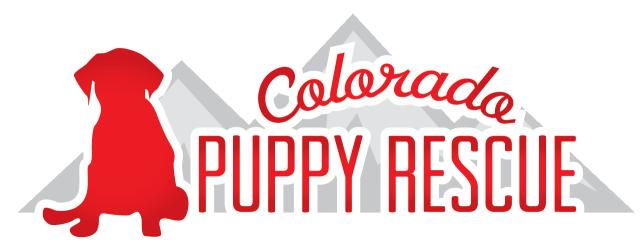 Co Puppy Rescue Puppies Rescue Colorado Adventures