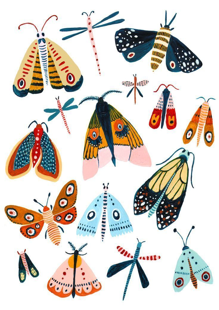 The Design- - A playful Woodland design featuring all the best moth species. - This wall art was designed to add a splash of nature to your home. - It makes a great gift for a new home, a new baby, or maybe just a gift for yourself! - I love to illustrate Animals, Nature and Travel. I'm inspired by my love of botanical gardens, nature books and my cats of course. #botanicgarden