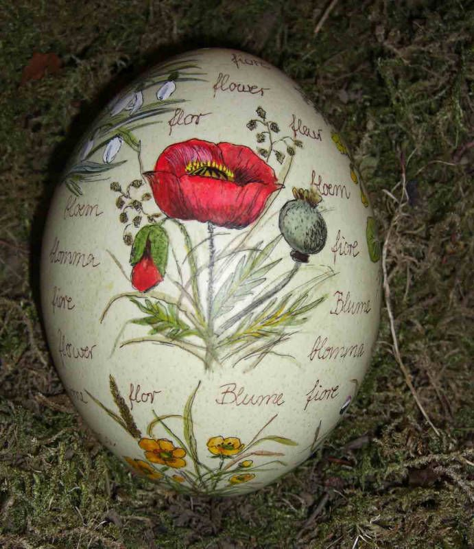 Easter Egg Market - Bavaria.  Poppy.  Pinned by www.mygrowingtraditions.com