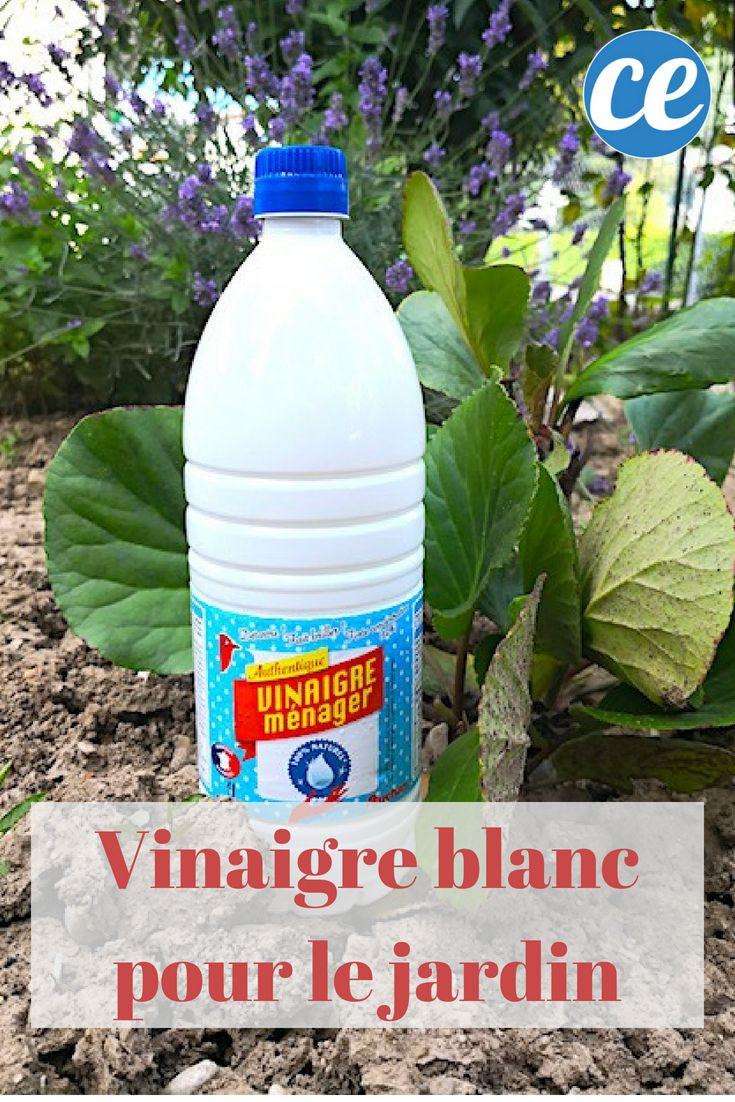 10 Utilisations Étonnantes du Vinaigre Blanc DANS LE JARDIN.