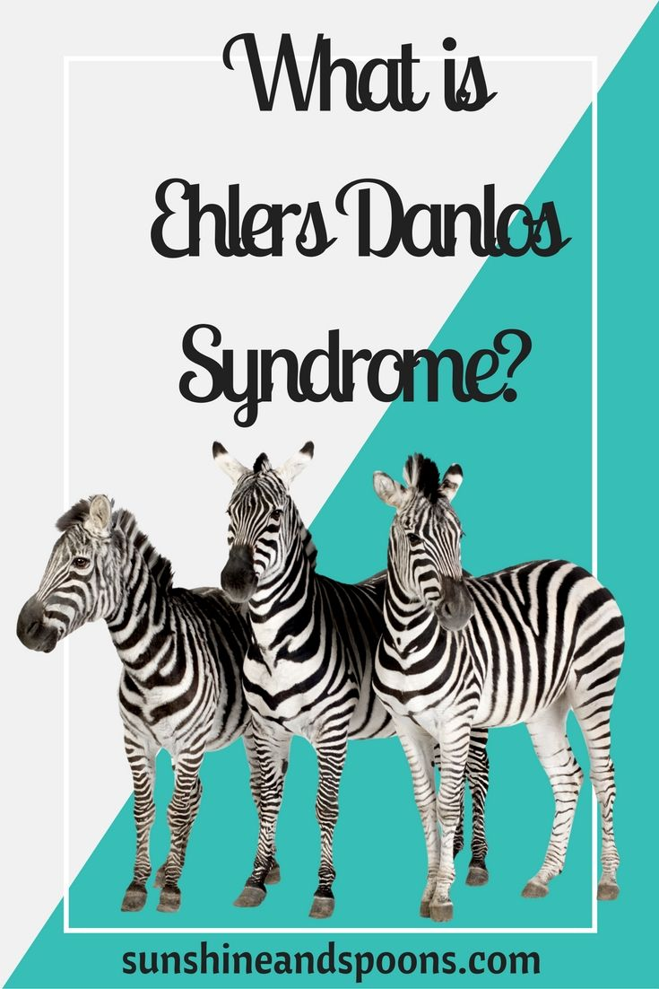 What Is Ehlers Danlos Syndrome? Ehlers danlos syndrome