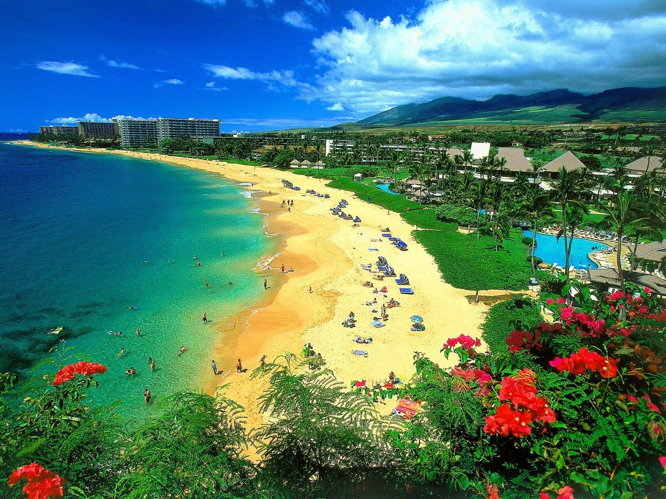 Hawaii Spend Some Moments Amidst The Natural Beauty
